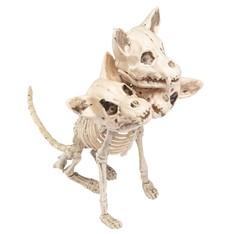 Kostra trojhlavého psa